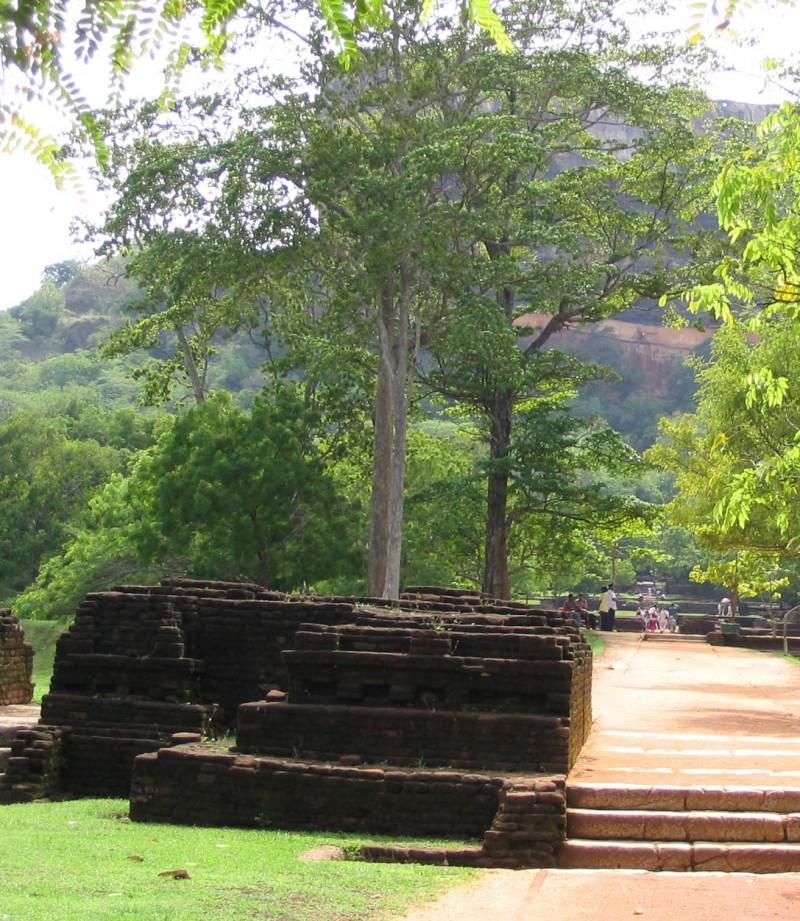 Sigiriya, by www.contentedtraveller.com