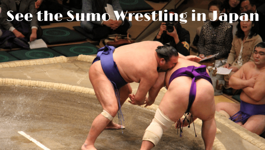 Addicted to Sumo