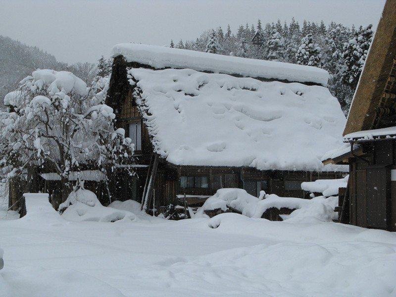 The gassho-zukuri houses of Shirakawa-go, Japan