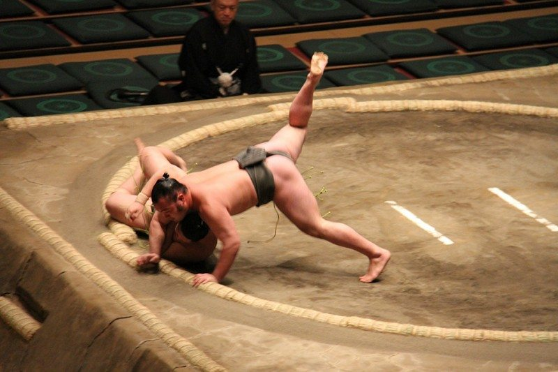 Addicted to Sumo