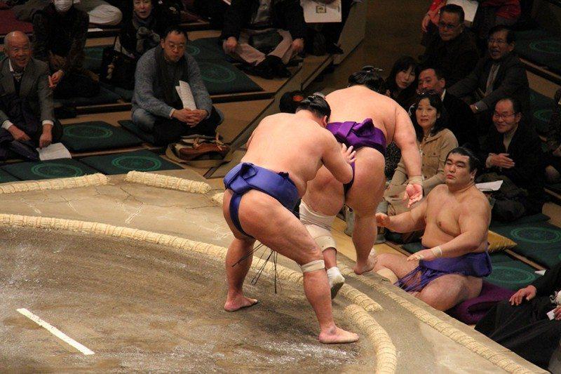sumo wrestling, japan