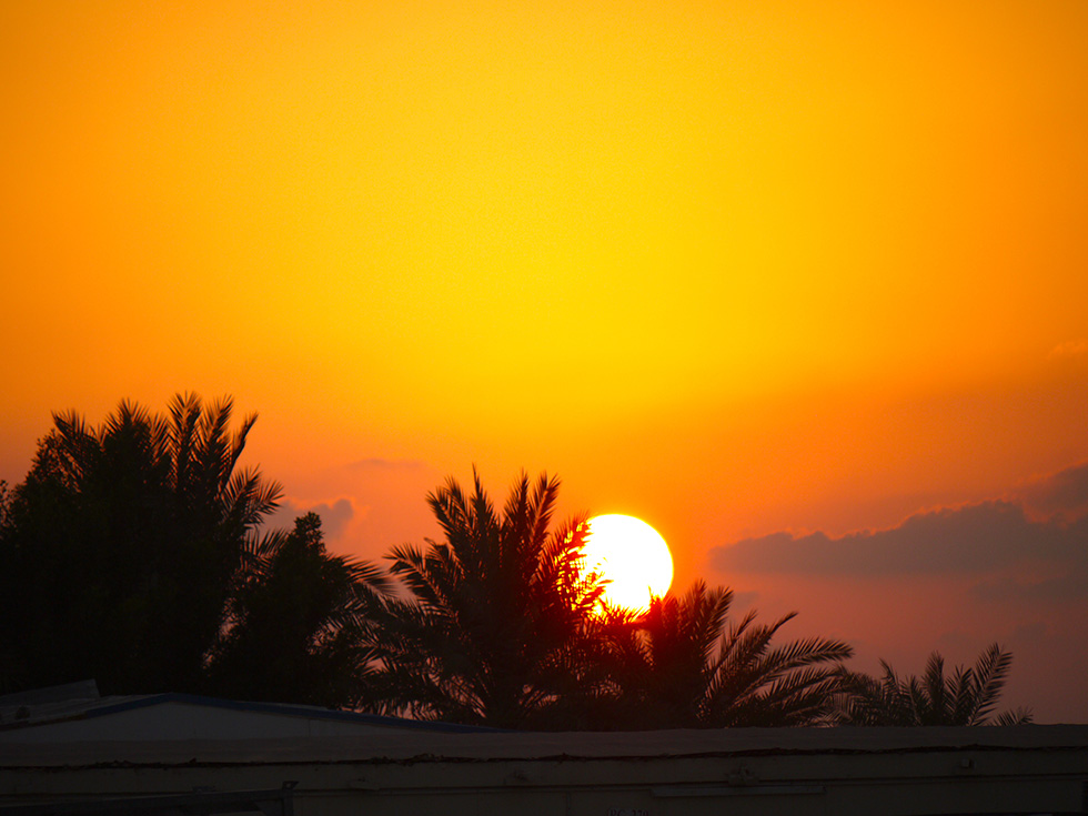 The Dubia sunset