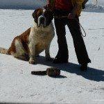 strange facts about zermatt