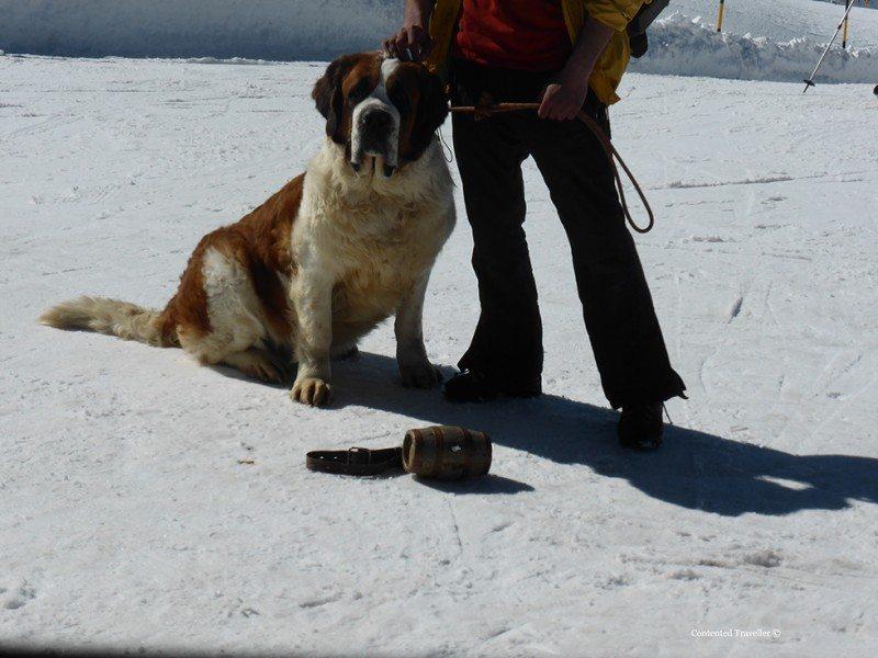 Strange but true – Zermatt Switzerland