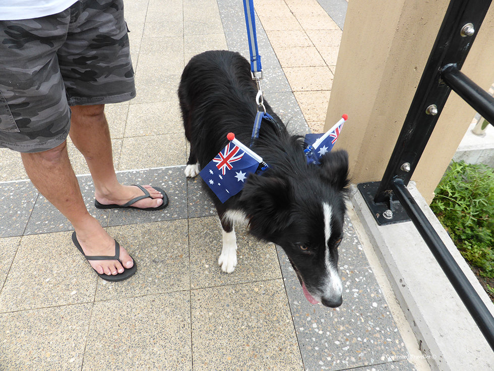 doggy A is for Australia, a b***** foul mouthed nation