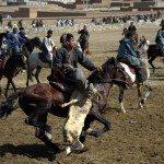 Tsaaten-mongolia
