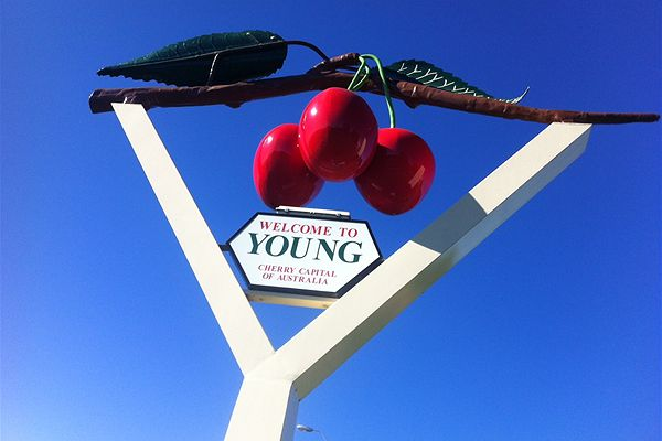 Y is for Young, NSW – Cherry Capital of Australia