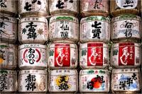 Drinking sake in Japan