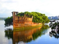 floating-forest-sydney-australia