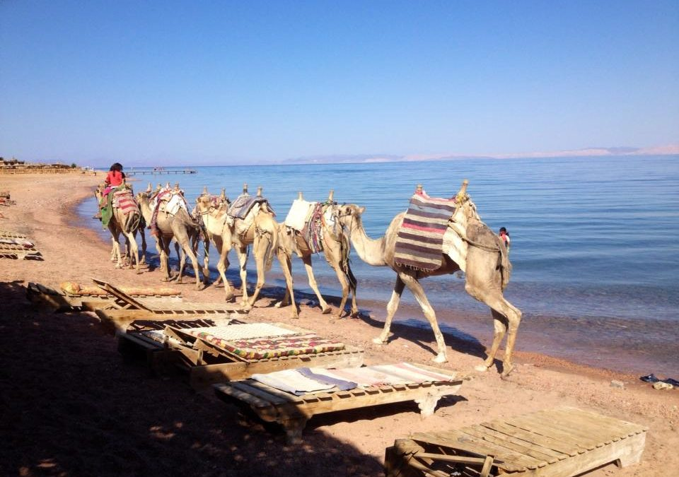 "Dahab, Egypt ""Outside my Front Door"" by True Nomads"