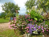 alsace-region-france, The-Alsace-Region-of-France, Hot-Spot-Travel-Destination
