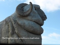 The Story of the Big Merino & Trappers Bakery, Goulburn Australia