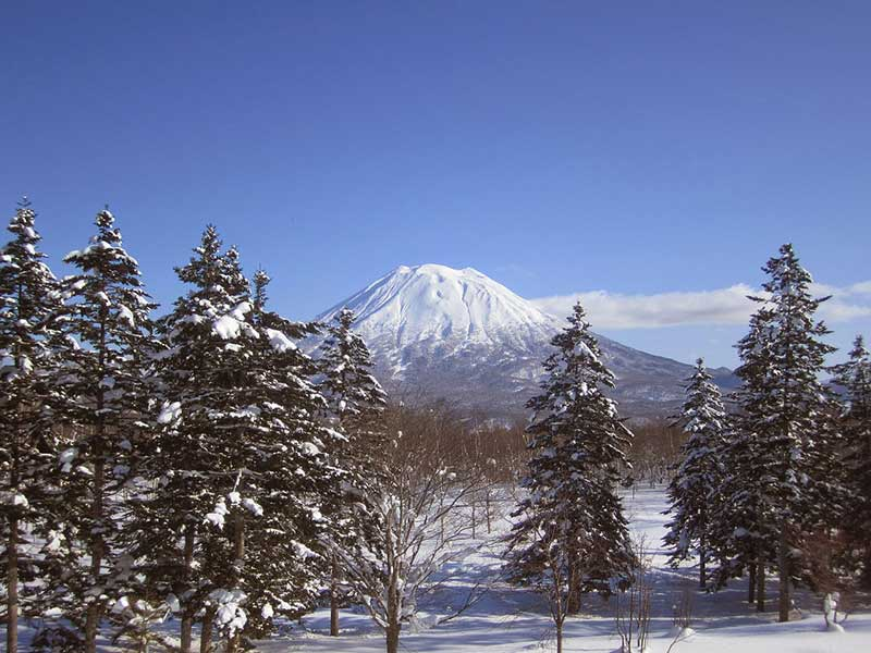 niseko skiing in japan
