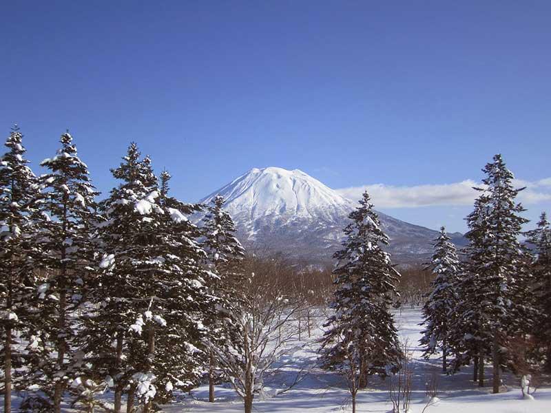 niseko skiing in japan