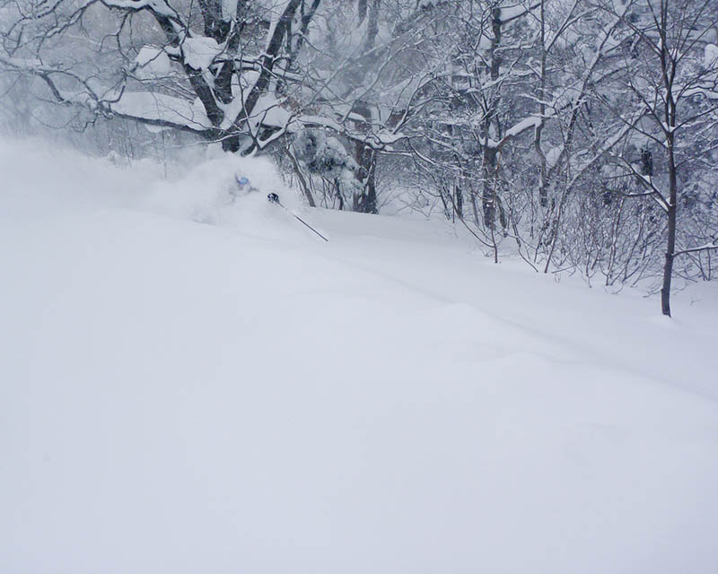 shigakogen skiing in japan