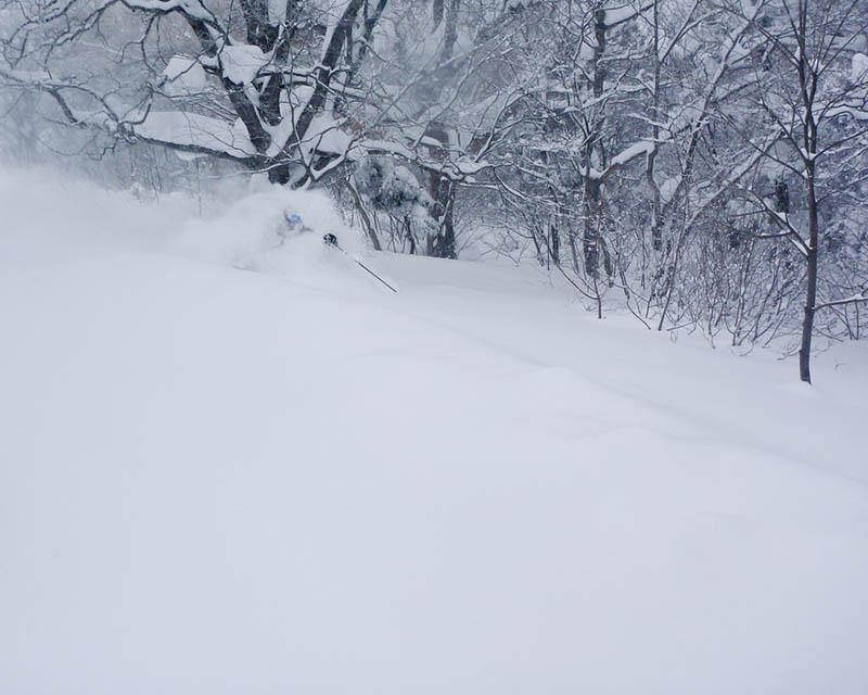 shigakogen skiing in japan