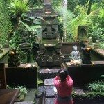 Has Ubud Bali changed since That Book and That Movie?