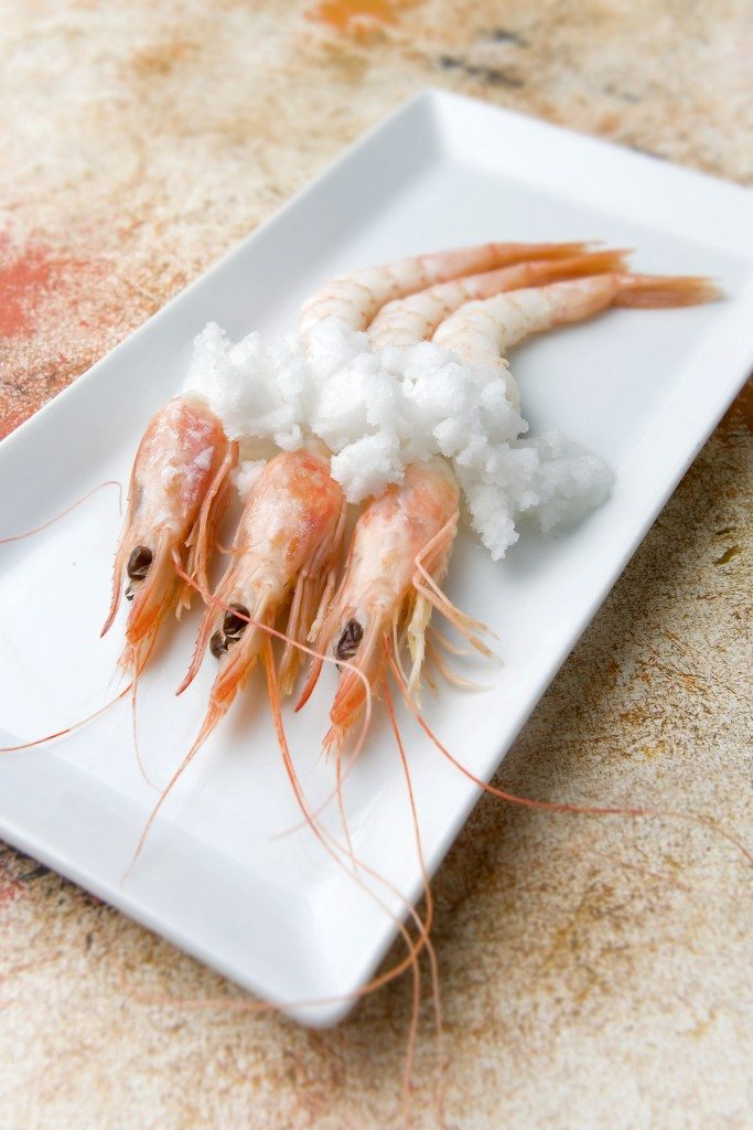 White prawns from Huelva with an icy sea water
