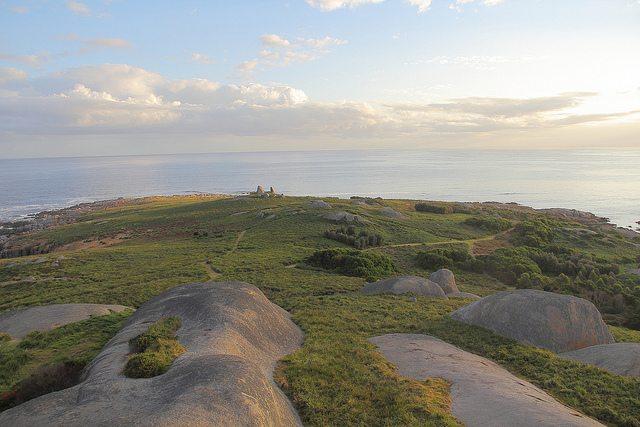 montague-island