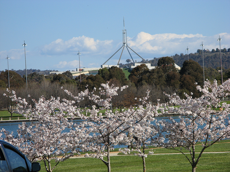 The Gentrification of Canberra