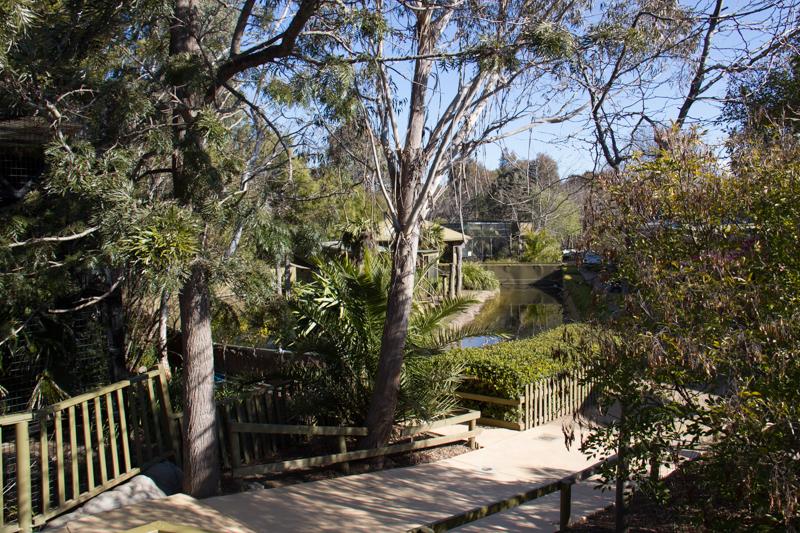Jamala Wildlife Lodge, Canberra