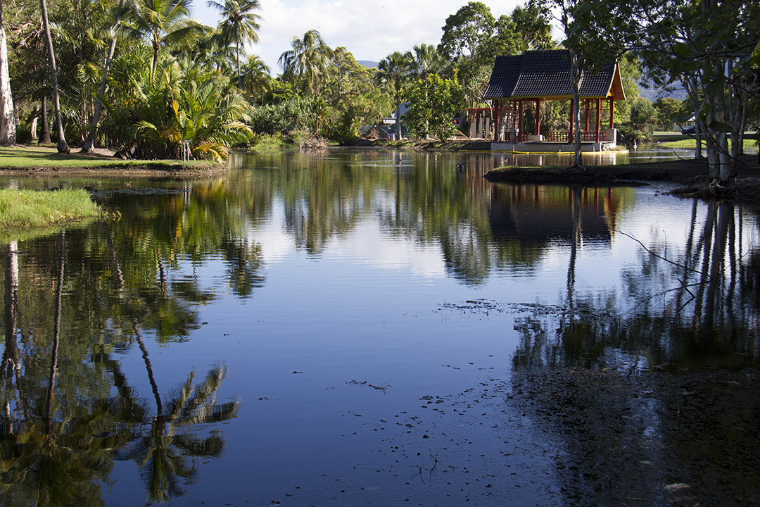 Explore the City of Cairns