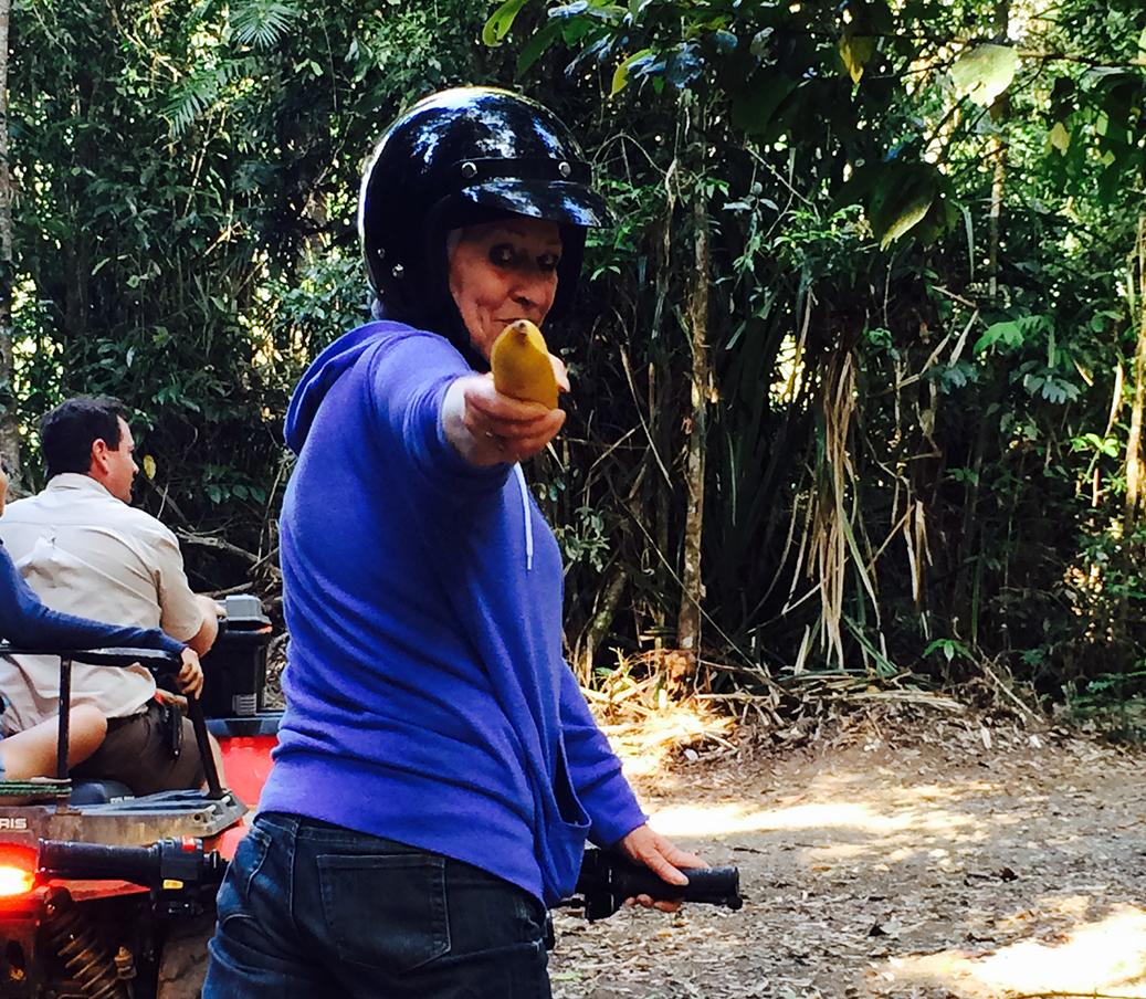 Rainforest & Orchard Tours Kuranda