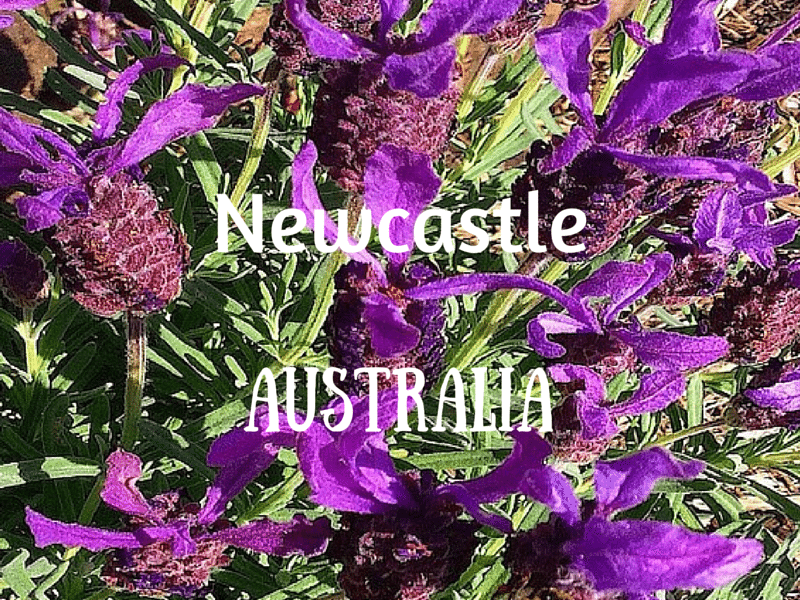 Newcastle, Australia – Outside my Front Door