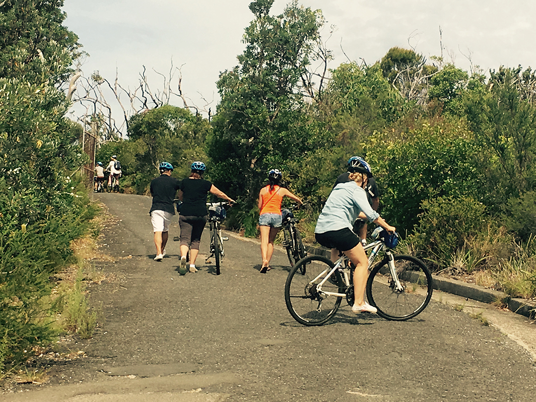 cycling-qstation