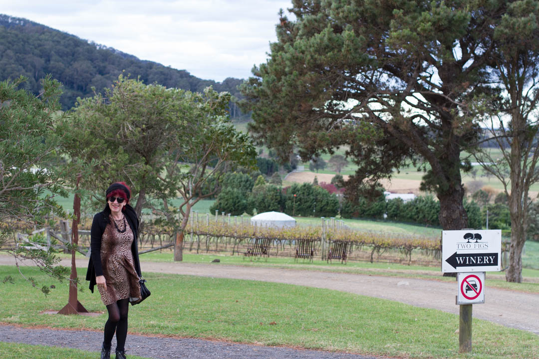 The Food and Wine Scene in Berry, NSW-paula