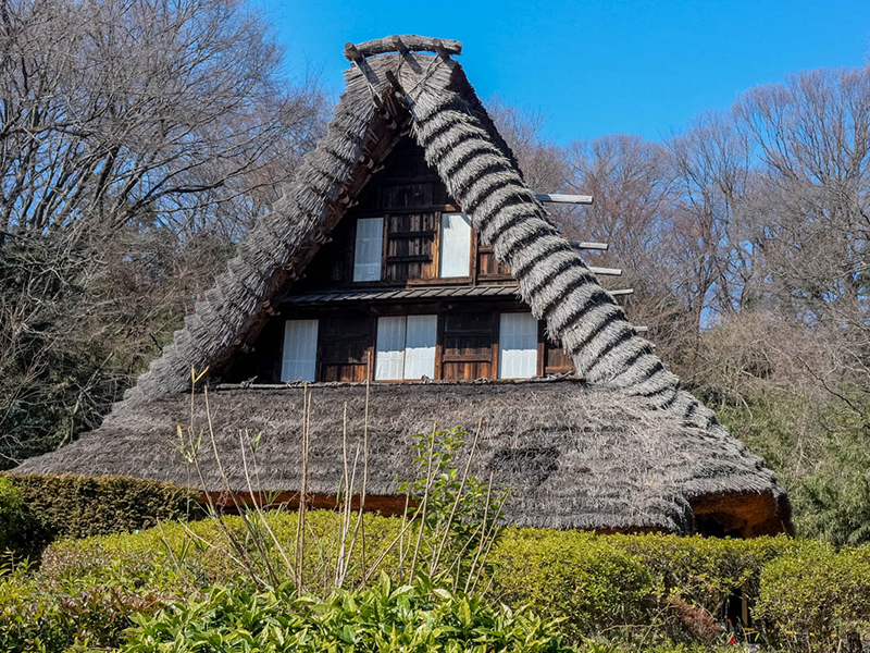 14 Unique Things you can do in Tokyo