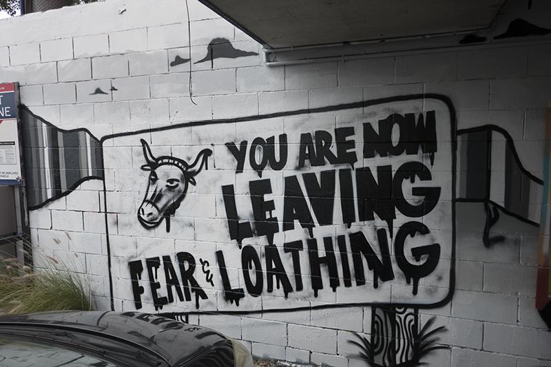 Wonderwalls Festival – Street Art in Wollongong