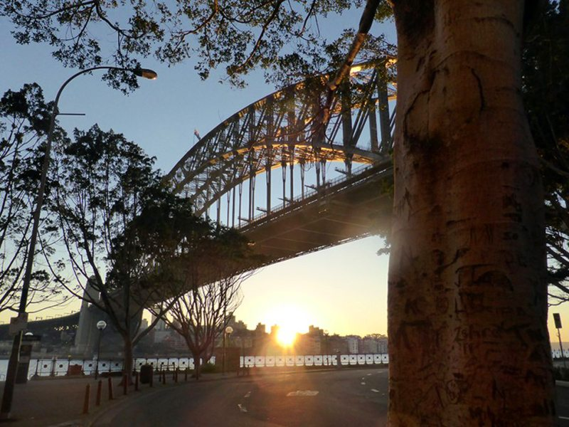 7 Fun Activities to do in Sydney