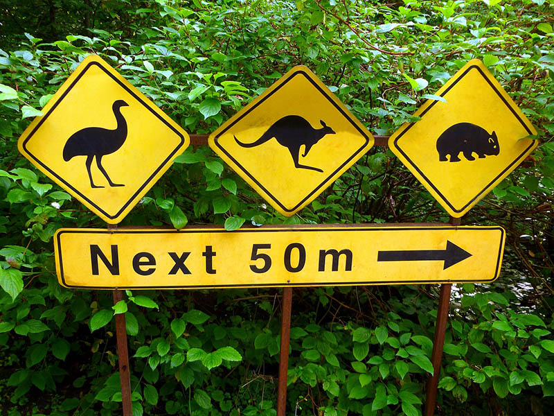 27 Do's and Don'ts when Visiting Australia