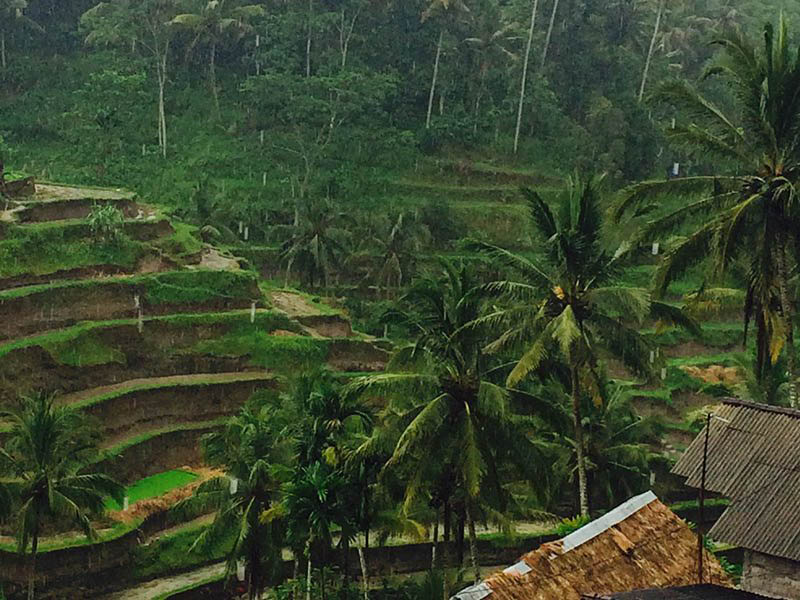 10 Things to do in Bali When It Rains