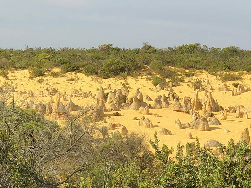 Discover the Pinnacles of Western Australia